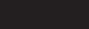 logo2021p